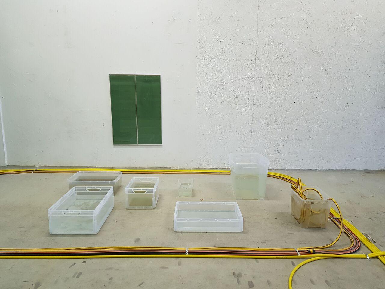 6 Installation view